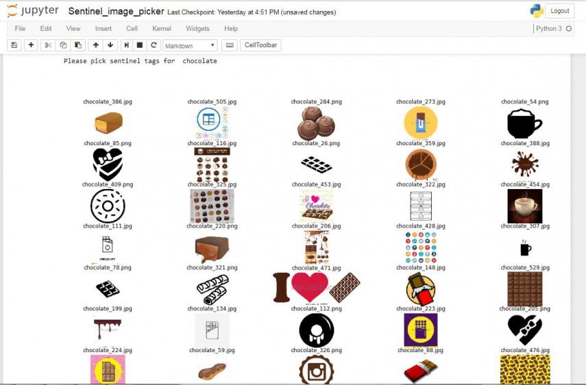 sentinal_task_chocolate.jpg